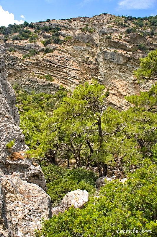 Ущелье и водопад Милона (Φαράγγι Μυλωνά, Milona Gorge)