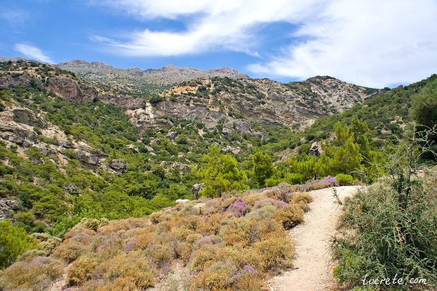 Ущелье Милона (Φαράγγι Μυλωνά, Milona Gorge)